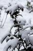 ... im Winter